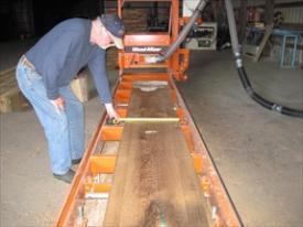 Grading white oak boards.